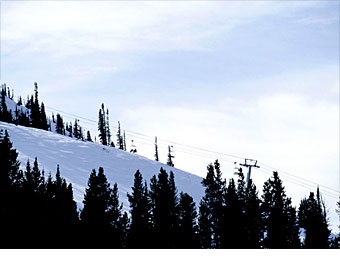 skiingce